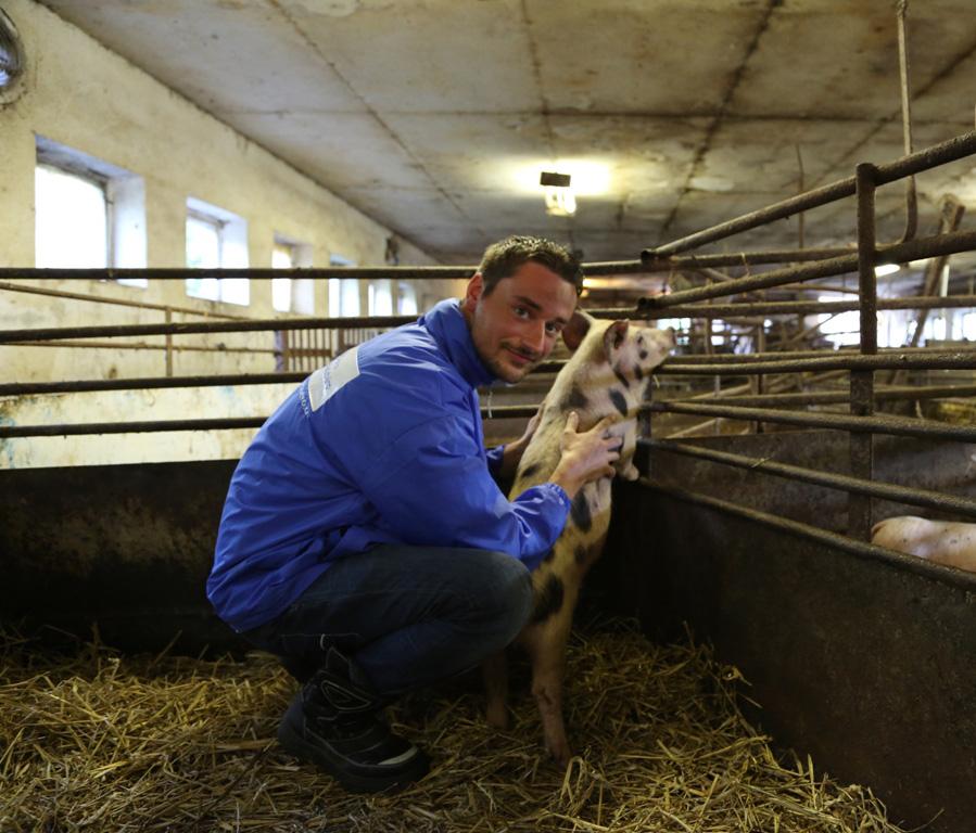 Jan Peifer hilft Schwein Jan in Not