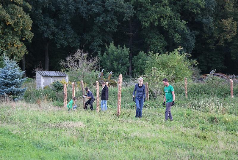 Das Tierschutzbüro-Team baut einen Zaun für das neue Zuhause von Dorte und Denise.