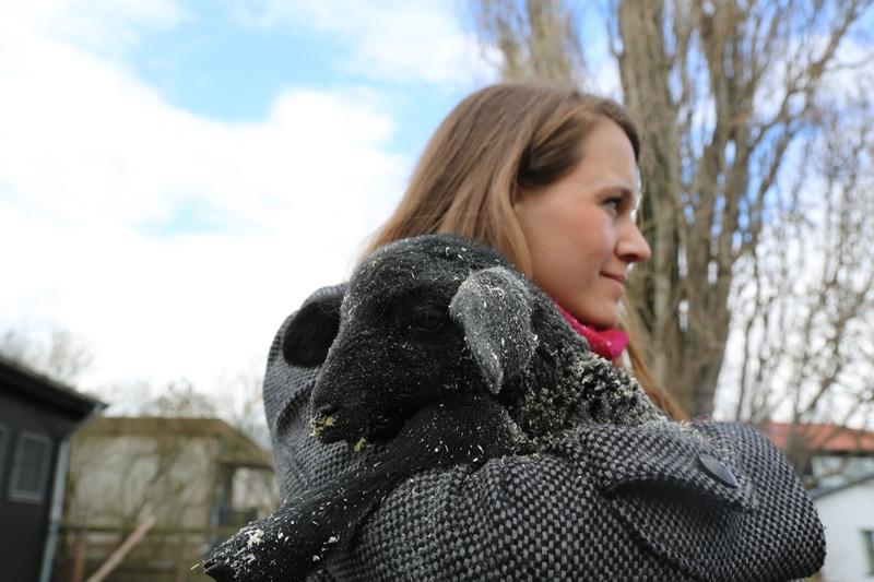 Rettung eines jungen Lammes