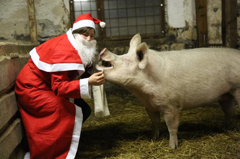 Lilly und Weihnachtsmann